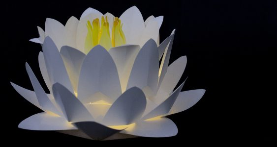 Paper water lily light