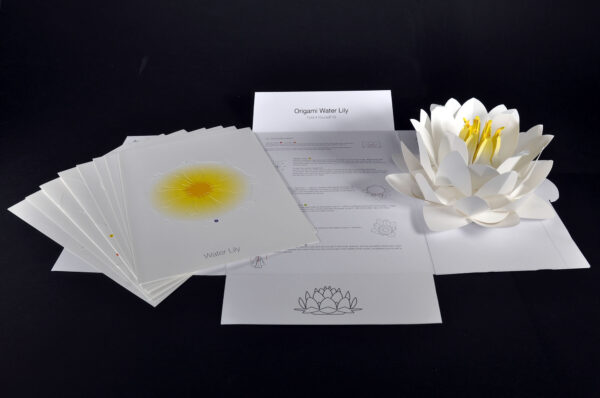 Origami Water Lily Kit