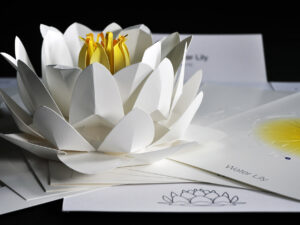 Origami Water Lily Kit flower