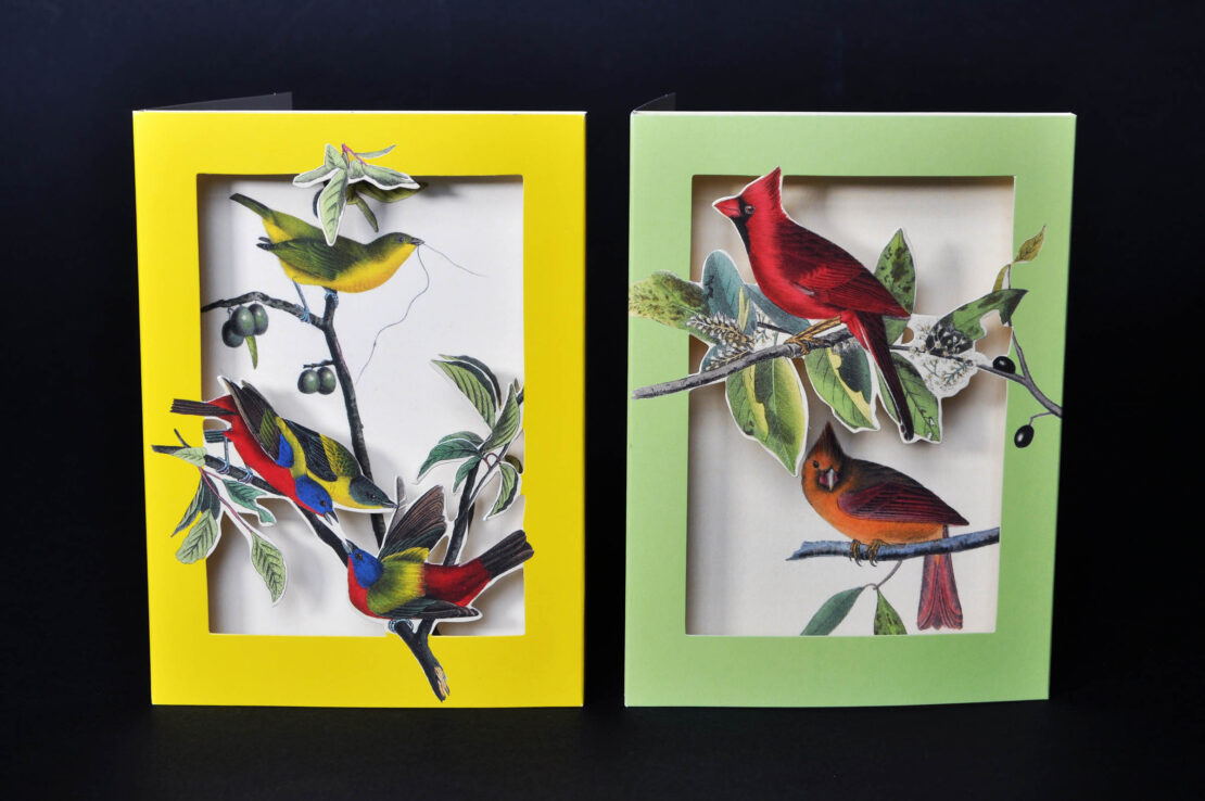 the met's pop-up notecards birds 2