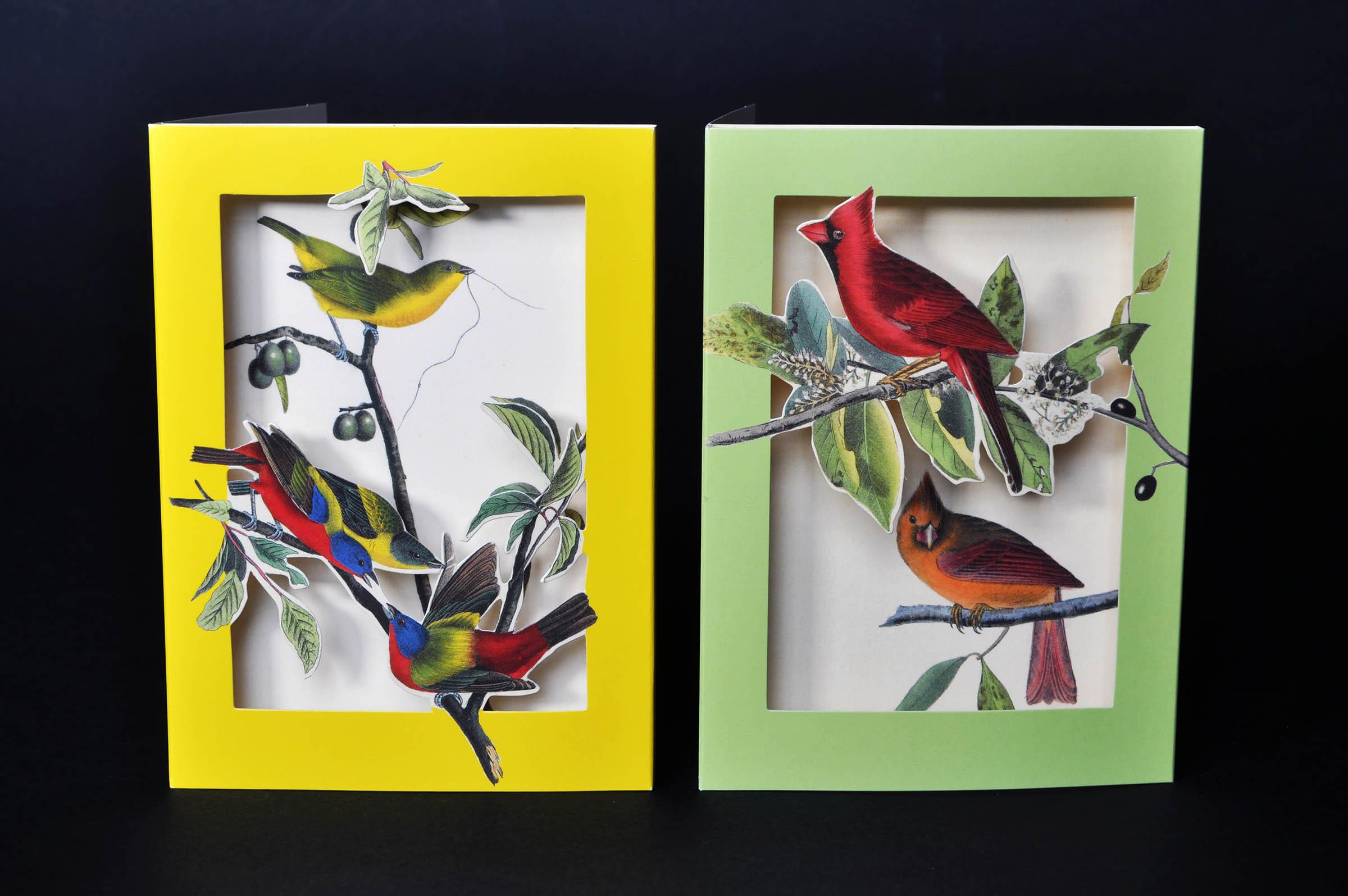 the met's pop-up notecards birds 2